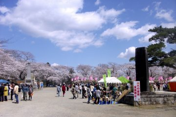 <p>Festival area at the base of the hill.</p>