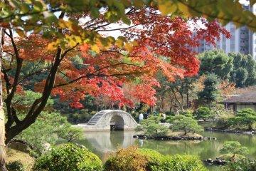 Jardín Shukkeien