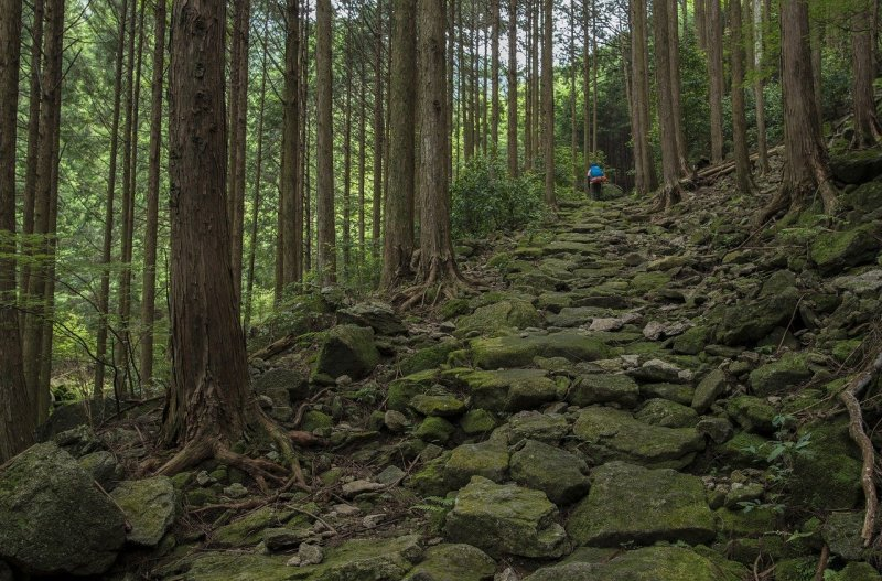 Iseji Route