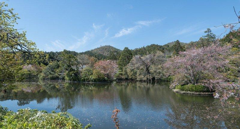 Kyoyochi Pond