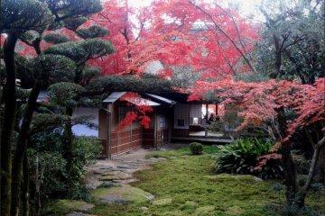 Jardín Kunenan