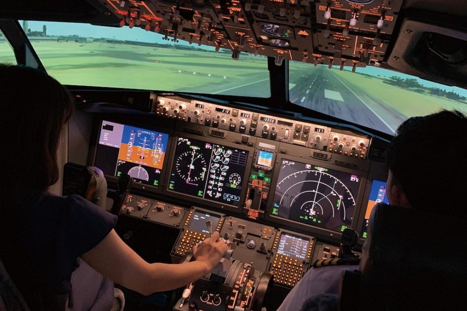 A real pilot will help you and keep your mind at ease.