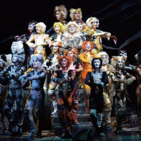 Teatro Cats