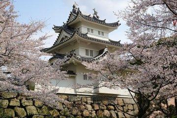 Tsu Castle