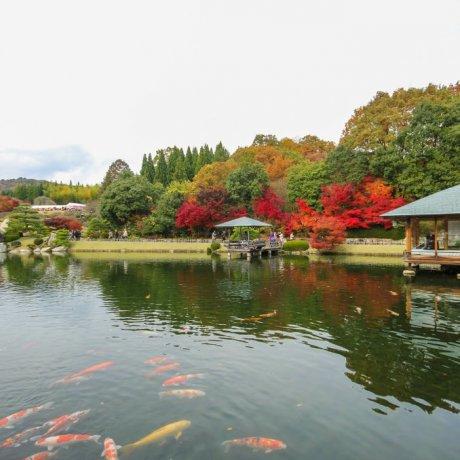 Jardín Sankeien (Mihara)