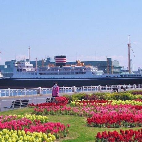 Parc Yamashita