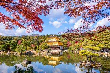 Kyoto Shore Excursion