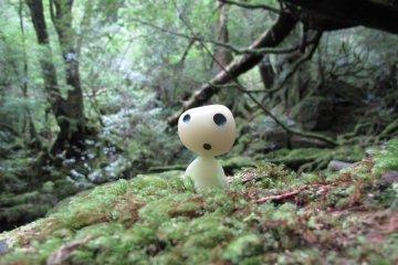 Virtual Tour: Ghibli Spots in Japan
